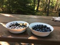 Blueberry camping muesli porridge celebrates Maine